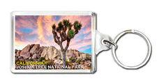 JOSHUA TREE NATIONAL PARK CALIFORNIA MOD2 KEYRING SOUVENIR LLAVERO