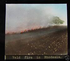 Glass Magic lantern slide VELD FIRE IN RHODESIA C1910