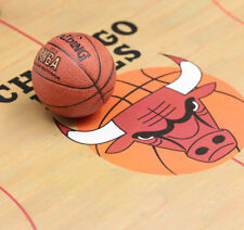 In-stock Maestro Studio 1/6 MS Master Basket Ball Magnet Accessory