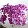 Butterfly Orchid Silk Flower Bouquet Phalaenopsis Wedding Home Garden Decor Lot