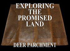 TORAH SCROLL BIBLE VELLUM MANUSCRIPT FRAGMENT 350YRS MOROCCO Numbers 12:1-14:45