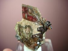 RHODONITE * FINE CRYSTAL ON PYRITE WITH NEOTOCITE !!! Chvaletice, CZECH REPUBLIC