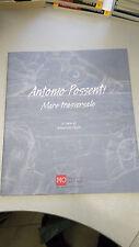 MARE TRASVERSALE ANTONIO POSSENTI Maurizio Vanni Catalogo Modena Modernarte 2006
