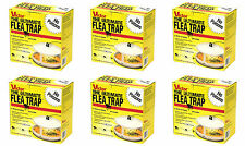 Victor M230 Ultimate High Efficiency Flea Trap, 6 pack *