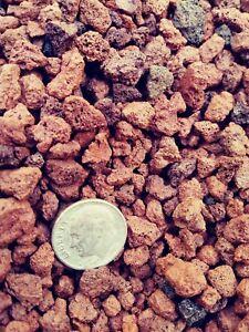 The porosity of lava allows for better soil drainage while maintaining moisture.