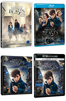 Fantastic Beasts And Where To Find Them - 3D 2D Blu-ray DVD / Pick format