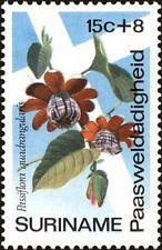 SURINAME -1974- Easter Charities Flower - PASSION FLOWER - MNH Semi-Postal-#B204