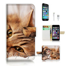 ( For iPhone 7 ) Wallet Case Cover P2420 Kitten Cat