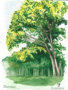 original painting A5 12ShAl art by samovar watercolor modern landscape trees
