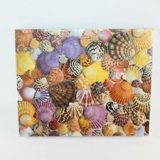 Cape Shore Scallops Shells Jigsaw Puzzle 550 Pieces Sealed Made In USA Family