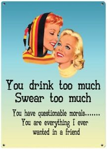 Friendship YOU DRINK TOO MUCH Metal Sign Plaque Novelty Gift Present for her NEW