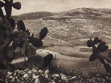 1925 SAMARIA HEROD'S HIPPODROME Photogravure Art Print WEST BANK Palestine