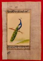 Hand Painted Peacock Bird Birds Miniature Painting India Art on Old Paper Nature