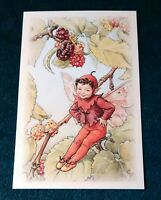 CICELY MARY BARKER FLOWER FAIRIES POSTCARD, THE MULBERRY FAIRY, OF THE TREES