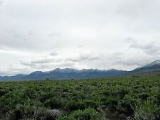 10 ACRE NEVADA RANCH ELKO COUNTY NEAR TOWN/UTAH! AMAZING VIEWS!! FINANCED @ 0%