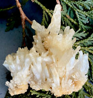58.6g DELICATE NATURAL YELLOW CALCITE CRYSTAL HEALING CLUSTER  Reiki  ROMANIA