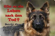 Deutscher SCHÄFERHUND - A4 Metall Warnschild Hundeschild Alu SCHILD - DSH 38 T19