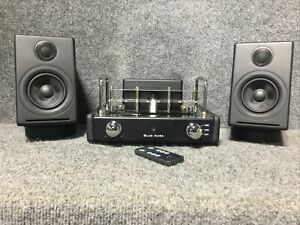 Blue Aura v30 Amplifier&Leather Speakers, Used, Clean