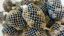 20 pva mesh balls 20 quality bait  balls plus 5 pva bags carp fishing pva bags