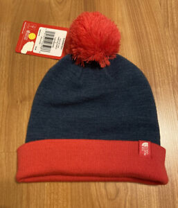 New North Face Blue And Pink Ski Winter Hat Beanie Size Youth Small