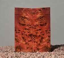 scales elm stabilized wood blank for grip burl block 123 x 50 x 14 mm.