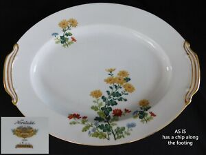 """Noritake Sandra OVAL 12"""" SERVING PLATTER  have more items to set AS IS"""