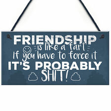 Funny Friendship Sign Novelty Best Friend Plaque Birthday Rude Thank You Gift