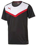 Puma BTS Herren Shirt Tee Trainingsshirt Freizeit Sport schwarz 654414 03