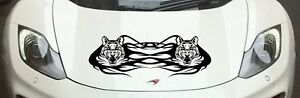 Tribal Car Bonnet Camper Motor Home Graphics Vinyl Decal Sticker A658