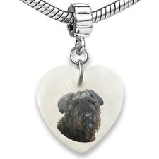 Bouvier Des Flandres Dog Heart Natural Shell European Bracelet Charm Bead Ebs159