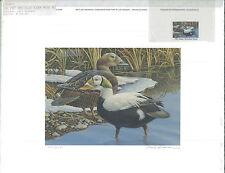 ALASKA #3 1987  STATE DUCK STAMP PRINT REGULAR ED  SPECTACLED EIDERS.Reg $150