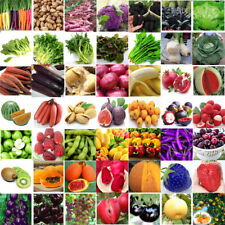 Various Heirloom Vegetable Fruit Seeds Non-GMO Seed Organic Plant Mixed Garden