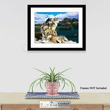 Wolf Prints Wolves Pack Picture Animal Photo Poster Print ONLY Wildlife Wall Art