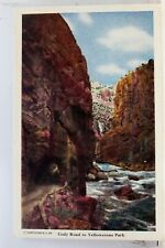 Yellowstone National Park Cody Road Postcard Old Vintage Card View Standard Post
