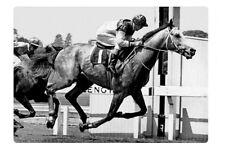 GUNSYND Australian racing Legend 1970s modern Digital Photo Postcard