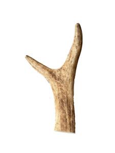 Deer Antler Dog Chew Treat 100% Natural Long Lasting