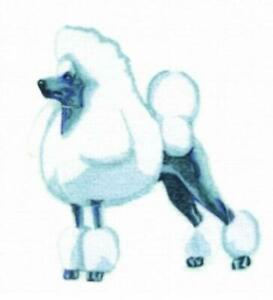 Machine Embroidered Applique Show Poodle sizes 3.2 x 3.4 or 6.3 x 6.8