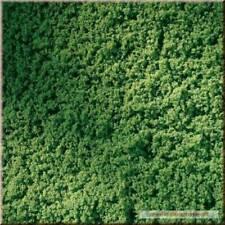 76666 Auhagen Tappeto erboso verde chiaro 150 x 250 mm