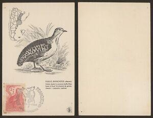 Argentina 1960 - Maximum Postcard Bird S659
