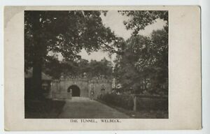 The Tunnel at Welbeck Nottinghamshire Vintage Postcard R5