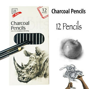 Professional Sketching Drawing 12 Set Art Pencil Kit Artist Charcoal Pencils