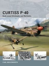 CURTISS P-40 by  CARL MOLESWORTH , World War 2  fighter planes