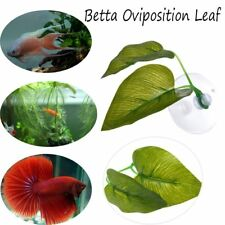 New Artificial Plant Leaf Betta Hammock Fish Rest Bed Tropical  Portable