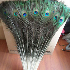 10Pcs Natural Peacock Tail Feathers Wedding Home Decor Floral Craft DIY Random