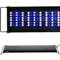 "Aquaneat Adiustable Aquarium LED Light Reef Coral LPS Blue & White 24""/48"""