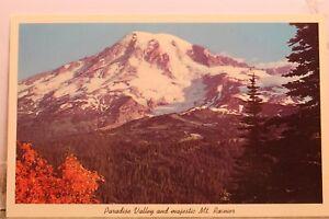 Washington WA Mt Rainier Paradise Valley Postcard Old Vintage Card View Standard