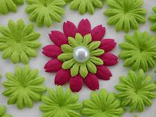 """100! papel de la Mora Flor Pétalo De Flor-verde fresco Daisy - 2,5 cm/1 """""""