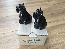 Black Scottie Terrier dog salt and pepper cruet set shakers pots cute dogs