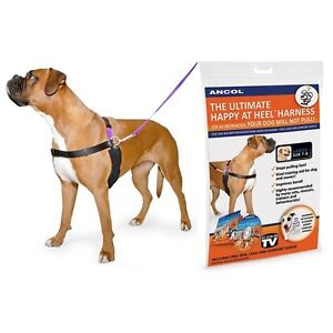 Ancol PDL Dog Harness & Lead Happy At Heal Obedience Training Dog Puppy Control