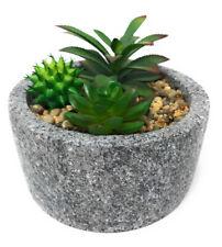 Pianta grassa artificiale finta vaso tondo composizione 3 piante grasse 5145